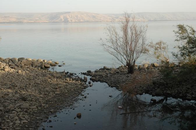 Kineret Sea of Galilee