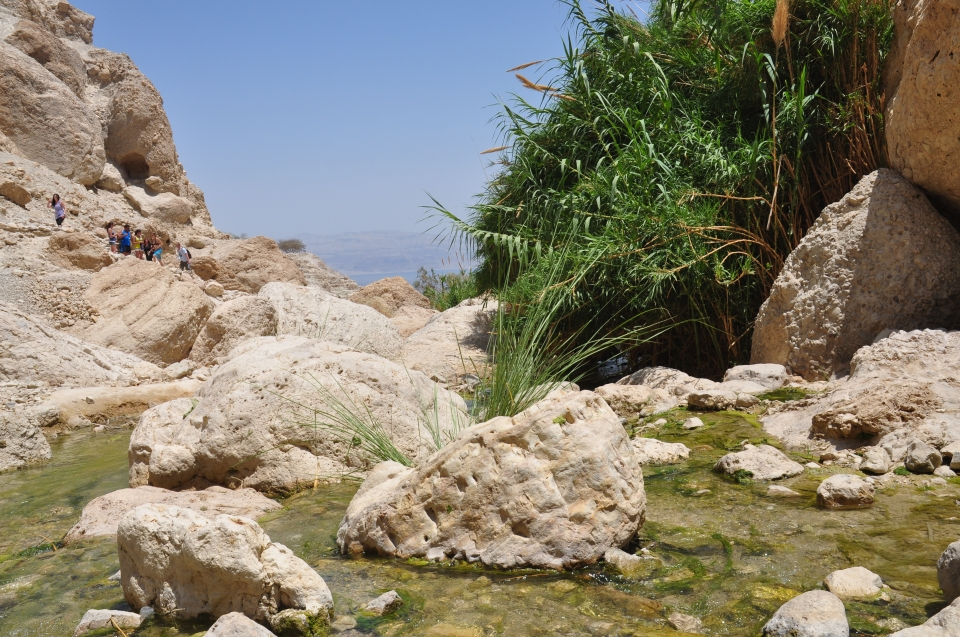 Ein Gedi-Nahal David