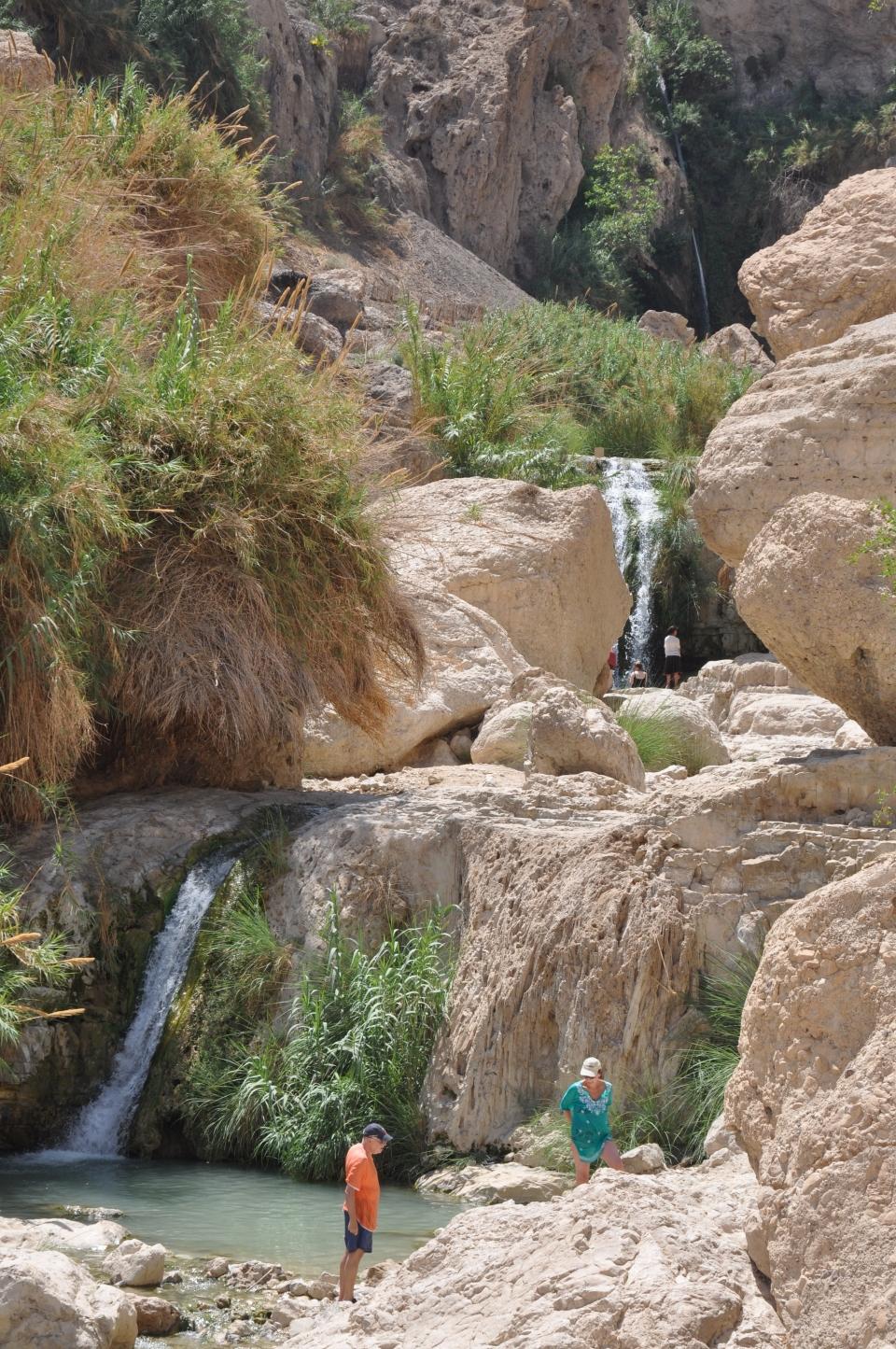 Ein Gedi-waterfalls and pools