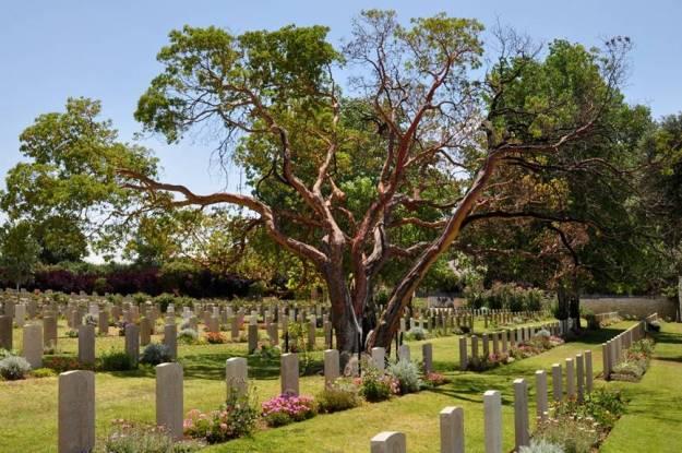 Katlav in cemetery