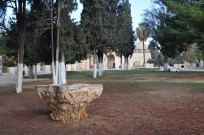 Corinthian capital on Haram_041