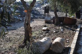Trash on Haram el-Sharif_060