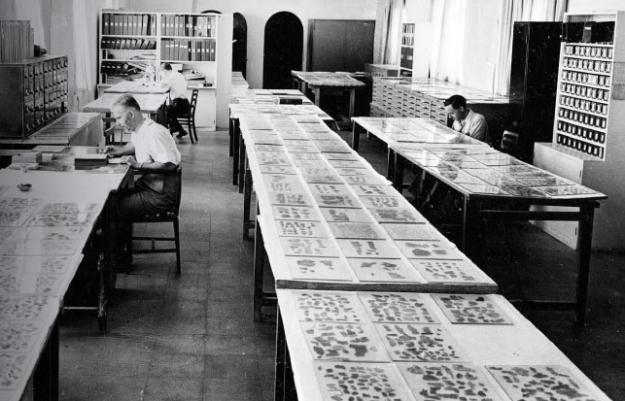 https://israeltours.files.wordpress.com/2012/06/scrollery-room-at-rockefeller-museum.jpg