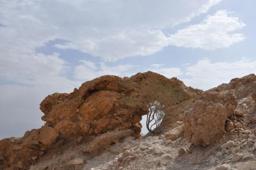 Rock sculpture, above Ein Gedi