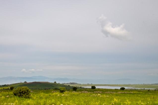 View on Golan