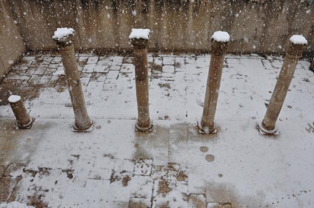Byzantine cardo in snow