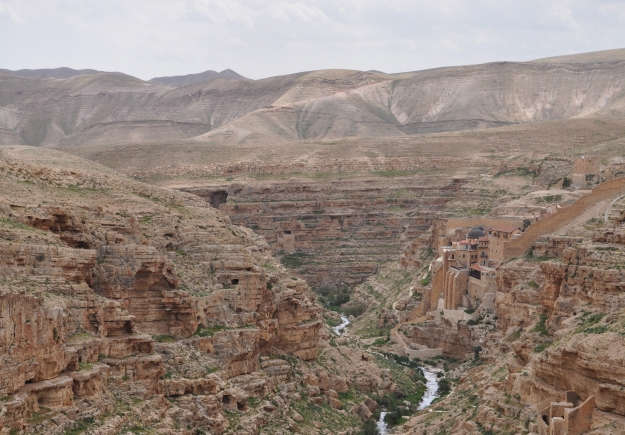 Mar-Saba-Kidron-Browns