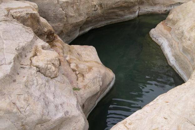 Wadi Qelt pool