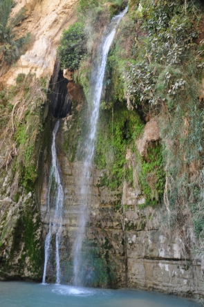 Waterfall and pool, Ein Gedi