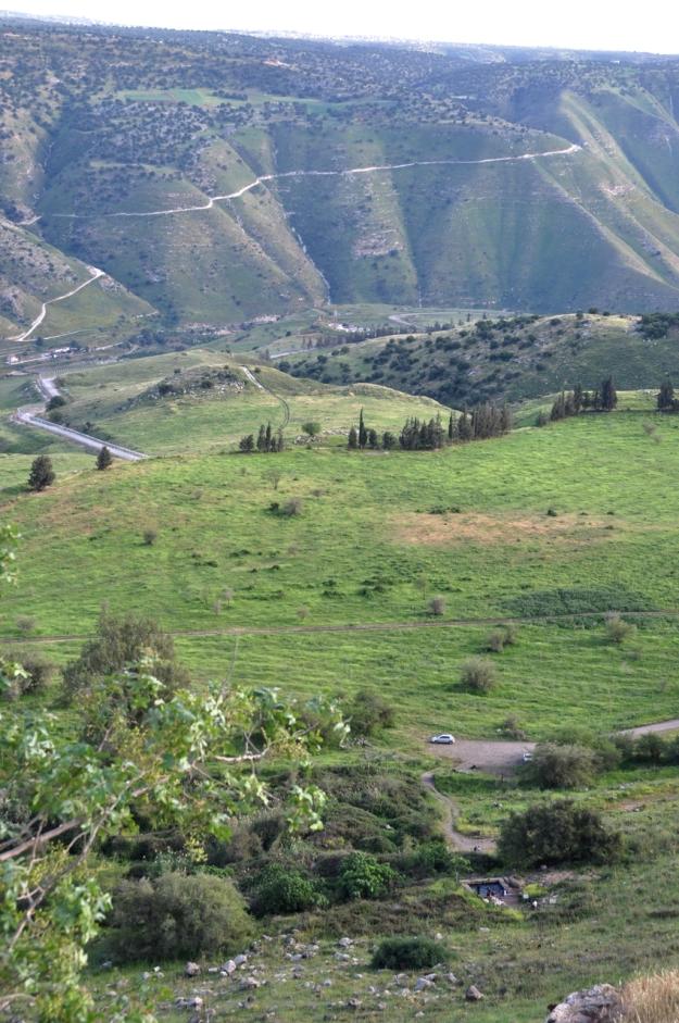 Golan view
