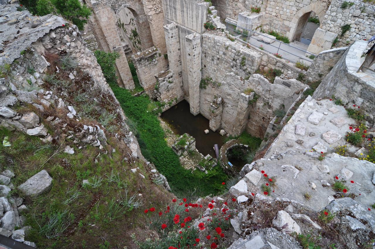 Bethesda Pool And Church Of Santa Anna Israel Tours
