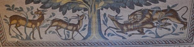 Lion & Gazelles