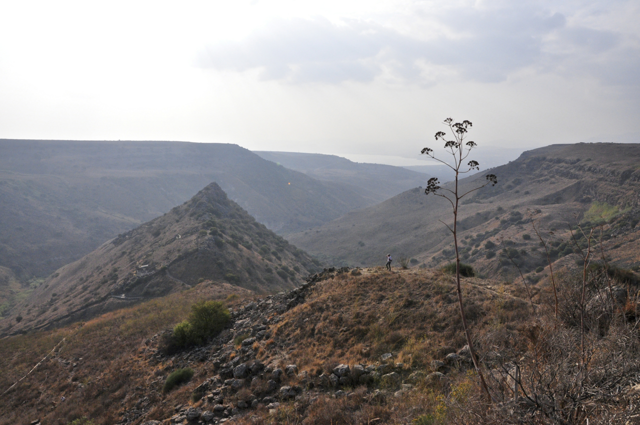 Golan Heights Tour Guide