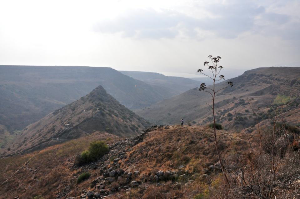 Gamla view