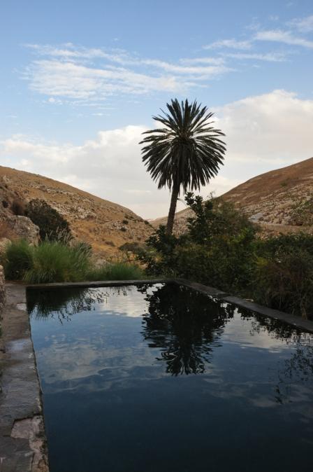 Tamar Pool, Wadi Qelt