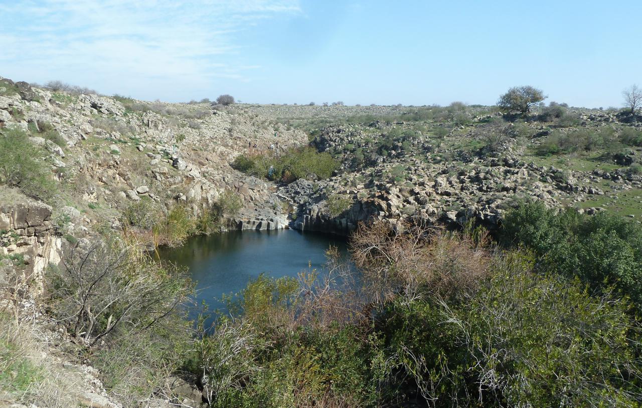 Nahal Zavitan on Golan