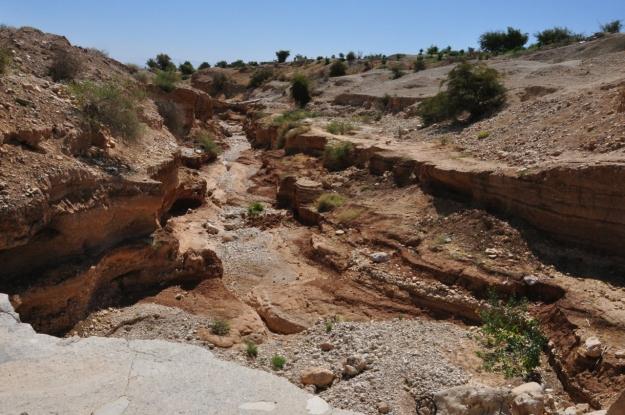 Wadi Qelt below Herod's 3rd palace