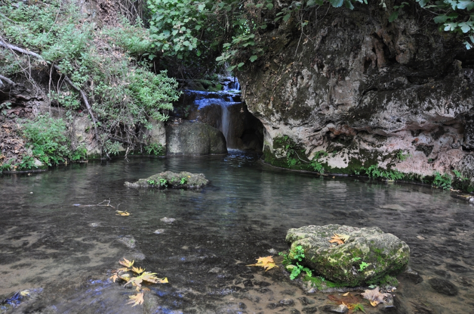 Pool, Upper Nahal Amud