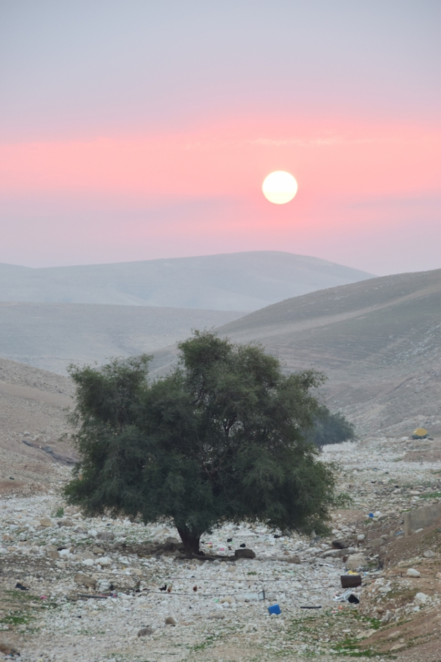 Sunrise Nahal Og