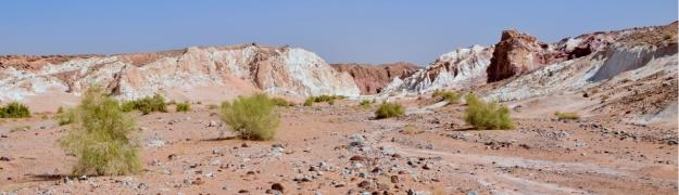 wadi-araba-jordan